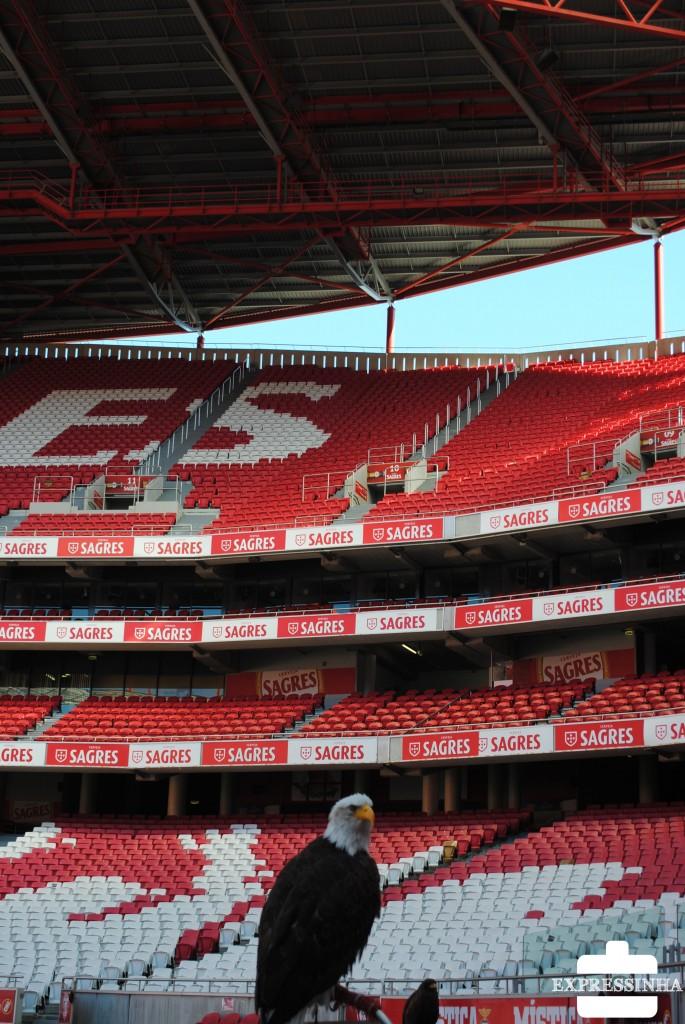 Lisboa, Estádio da Luz, Benfica, Águia