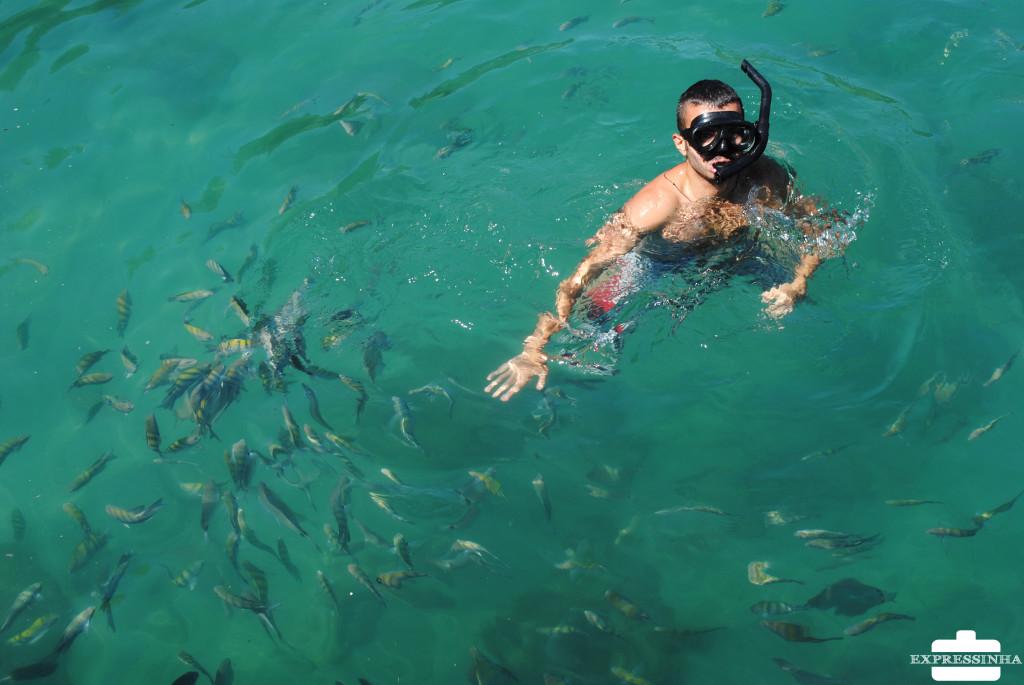 Mergulho na Ilha Grande!