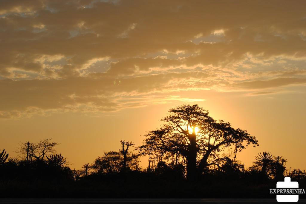 É assim a vida em Angola, marrom da terra, do fim de tarde, da vida!!