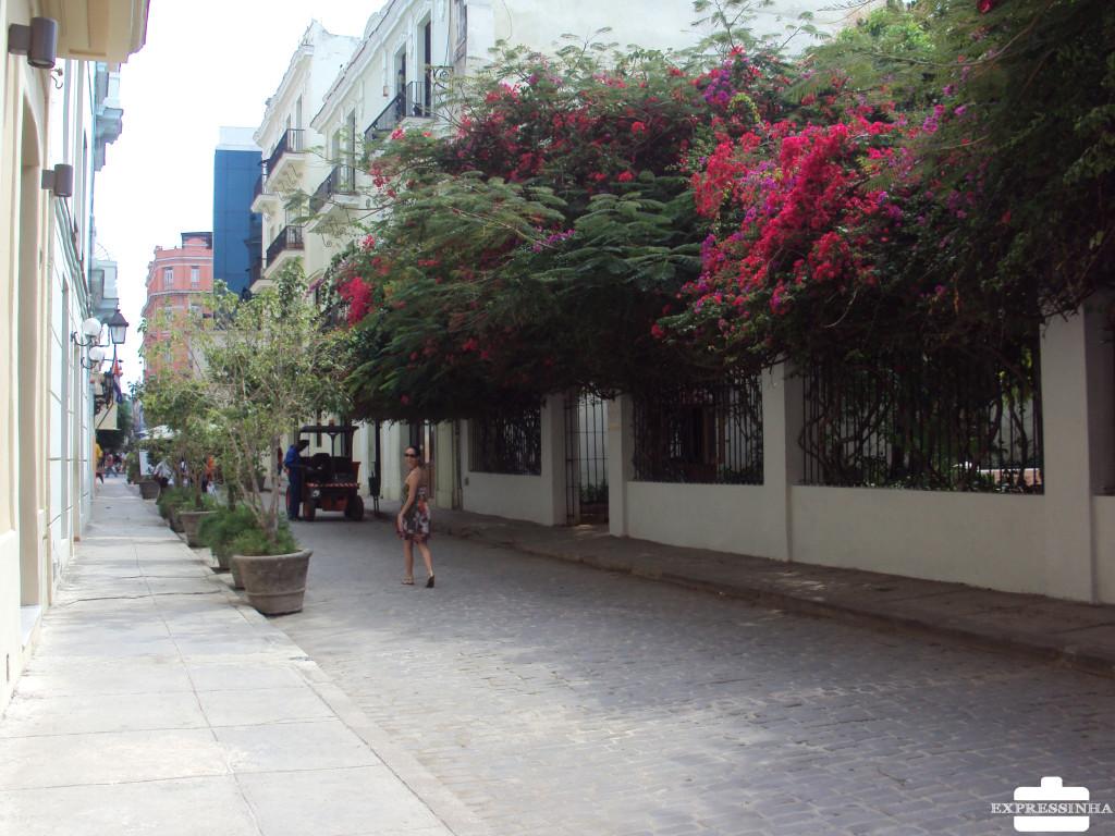 Cuba Havana Rua Calle