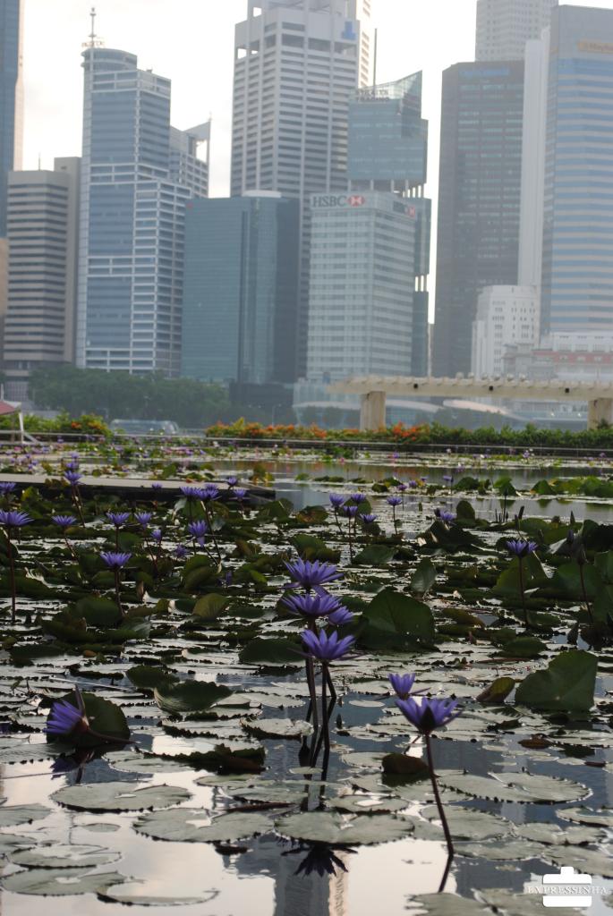 Singapura Marina Bay Sands Art Science Museum