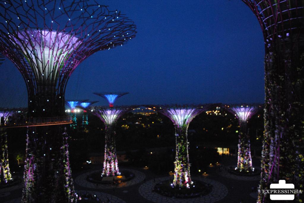 Expressinha Singapura Supertrees Groove