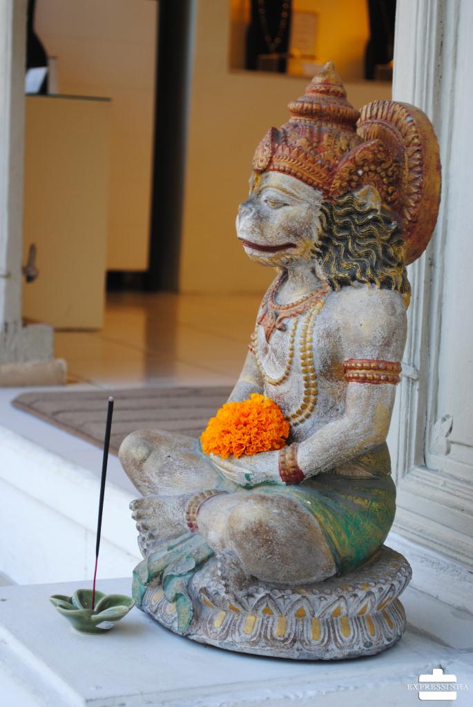 Expressinha Ubud Yoga (2)