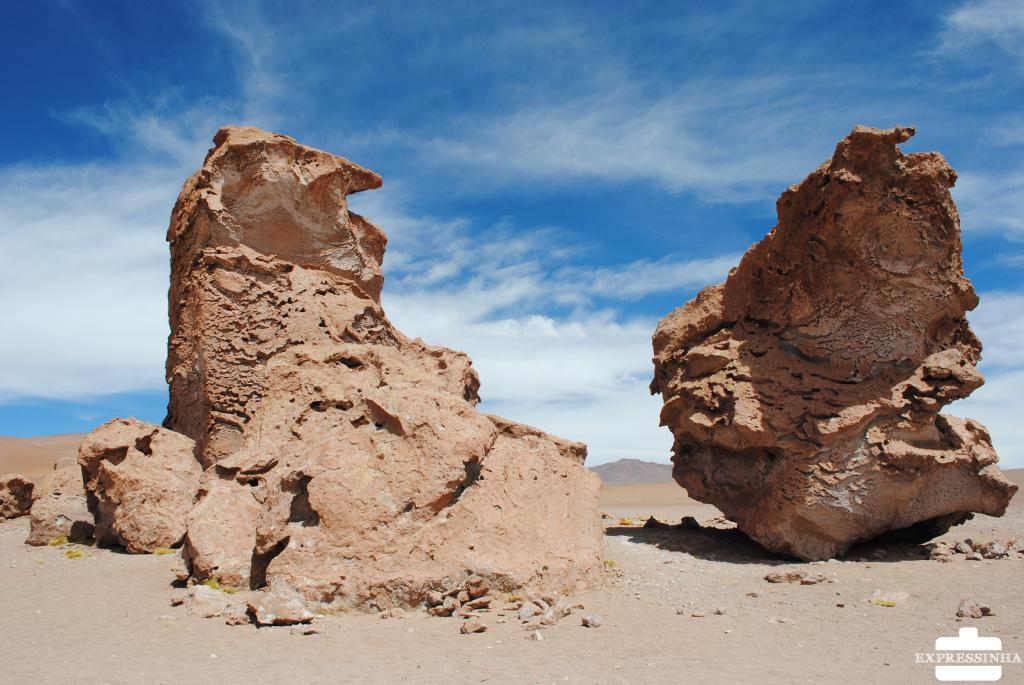 Chile Atacama Salar de Tara