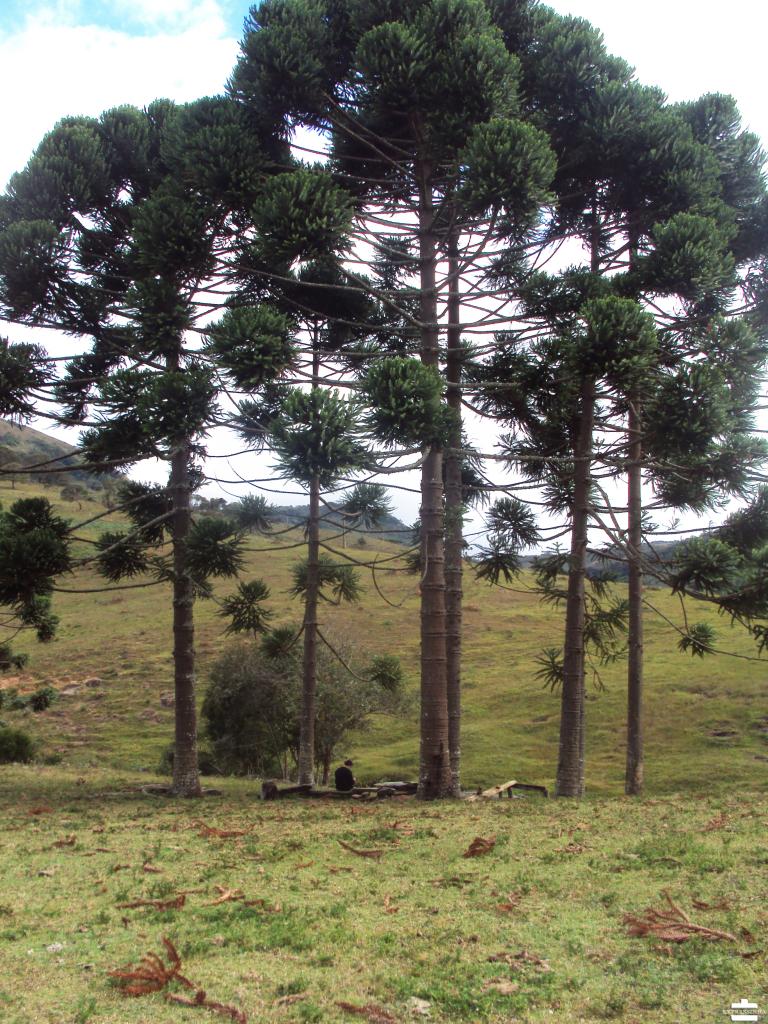 Brasil Minas Gerias Aiuruoca