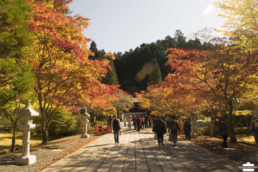 Japão Mont Koya Outono