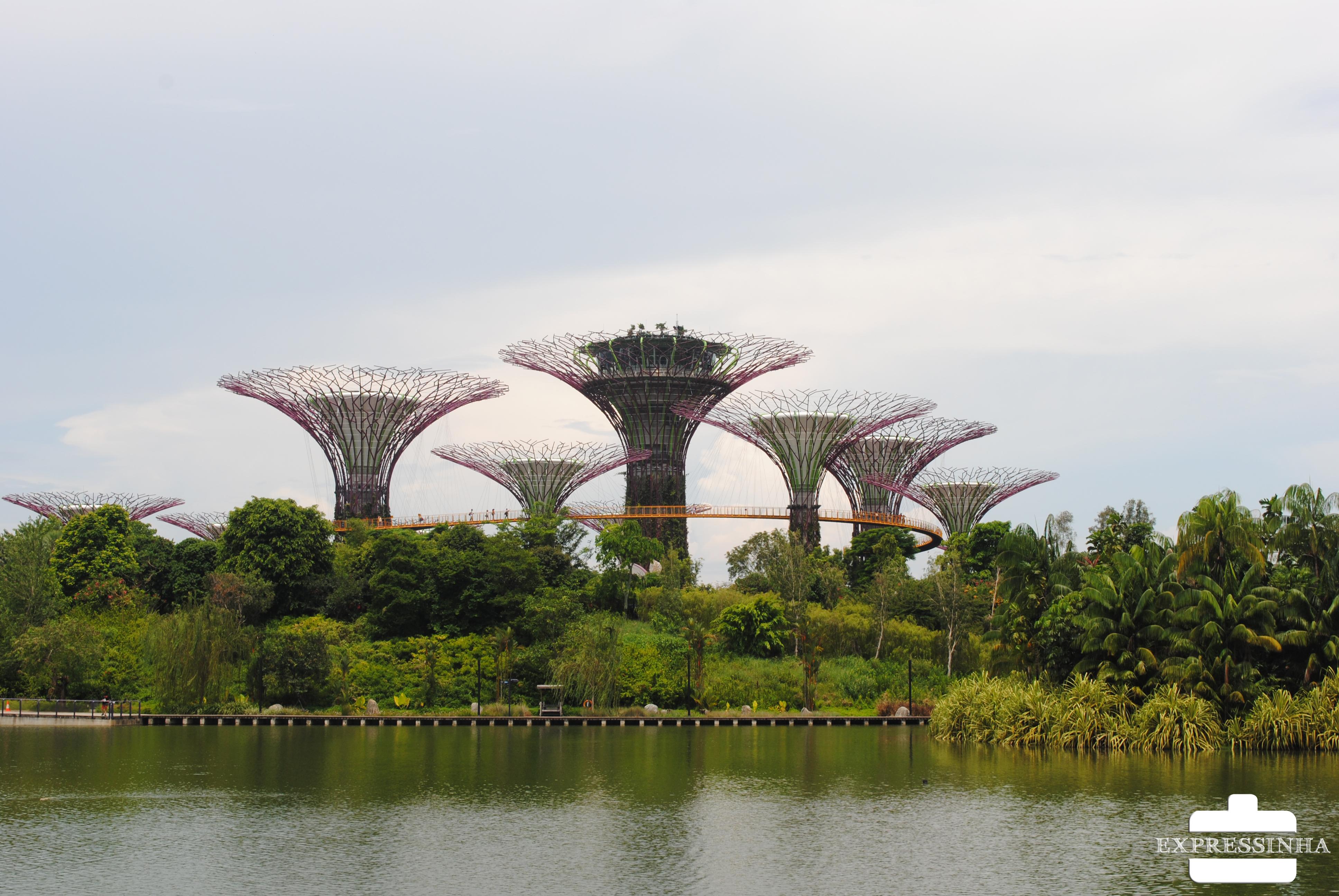 Supertrees Groove! um dos lugares lindos de Singapura.